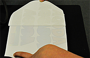 Fig 1. A successful completion of the first step with Image Clip Laser Dark looks like this.